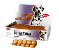 Resultado de imagen para Usos de cefalexina para perros